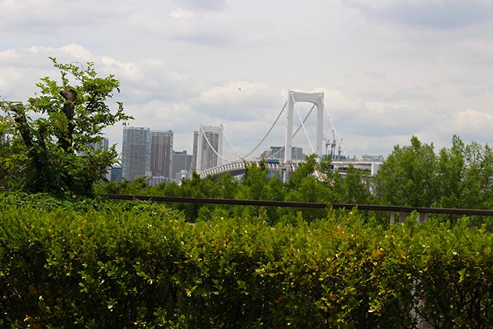 テラス席から見えるレインボーブリッジ