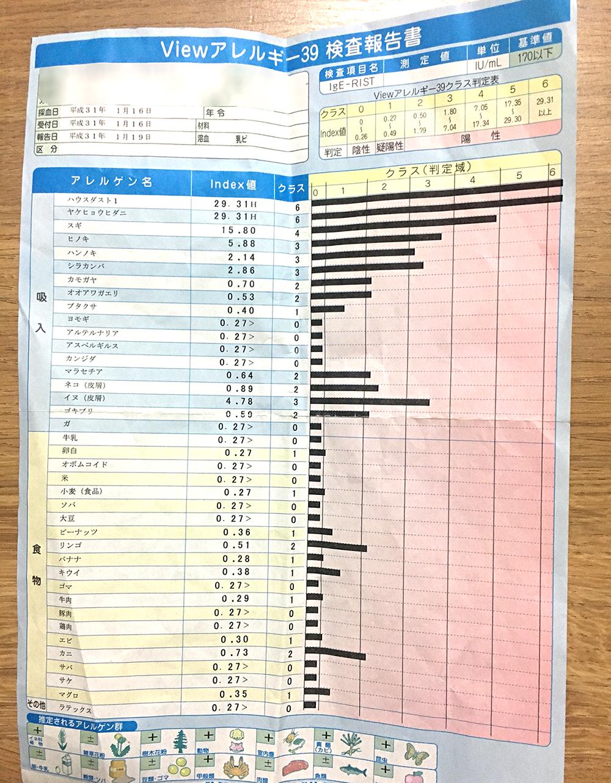 アレルギー血液検査の結果