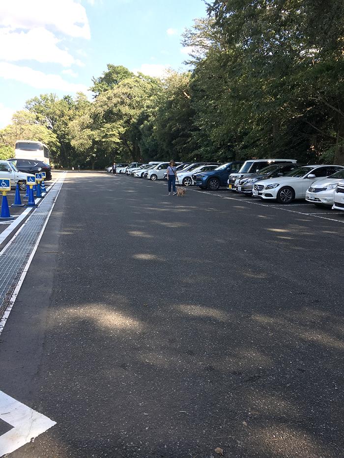 小金井公園駐車場